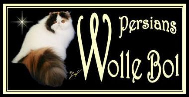 banner van cattery Wolle Bol
