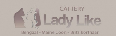 banner van cattery Lady Like